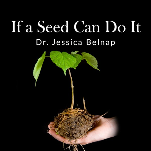 If A Seed Can Do It - Dr Jessica Belnap
